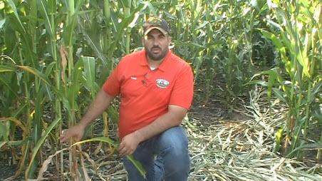 Agronomist Isaac Ferrie
